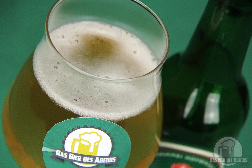 hofmann, pils, aus, pahres, privatbrauerei, hoffmann, hofman, bier, test, biertest
