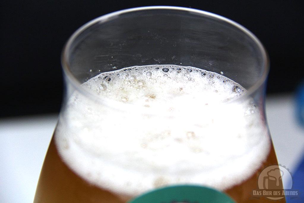 hopfenfaenger, hopfen, fänger, bier, test, biertest, craftbiertest, craft, beer, bremen, braumanufaktur, markus freybler